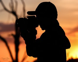 Nature & Wildlife Photography Through A Child's Eye