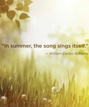 Summer is a Positive Season