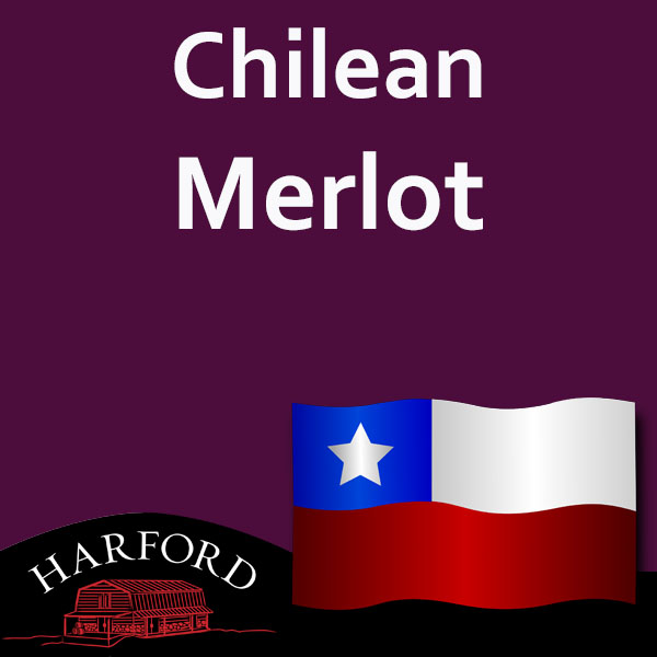 Chilean Grape Merlot