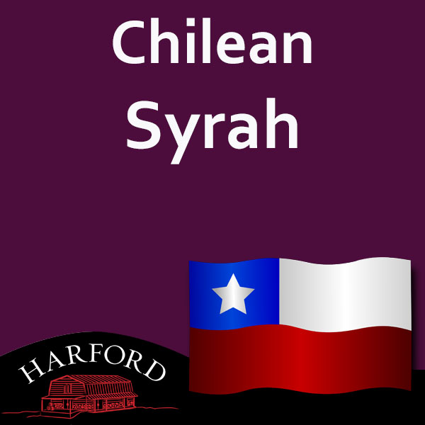 Chilean Grape Syrah