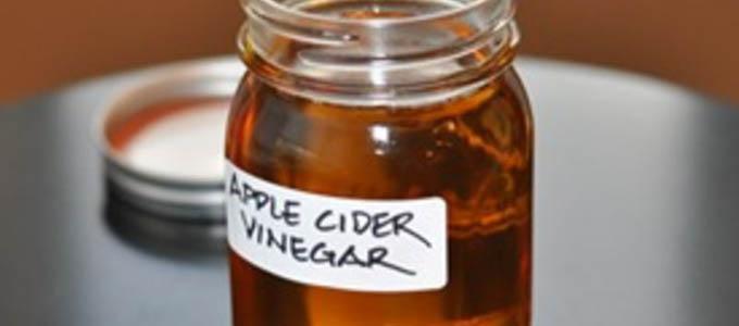 Manfaat Cara Membuat Dan Harga Toner Cuka Apel Daftar Harga Tarif