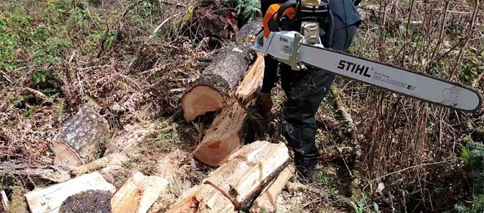 Chainsaw merek Stihl (youtube: 1na row)