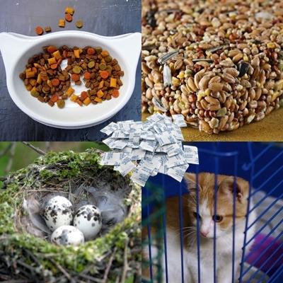 Manfaat Silica Gel Untuk Perawatan Hewan