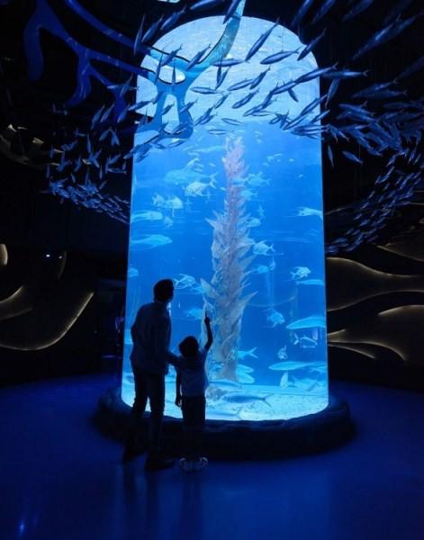 tiket masuk jakarta aquarium