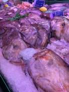 John Dory in Etaples Fish Market