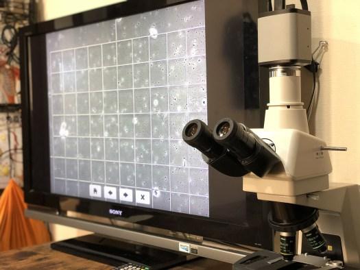 はりきゅう院さくら顕微鏡