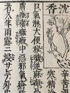 和語本草綱目の沈香