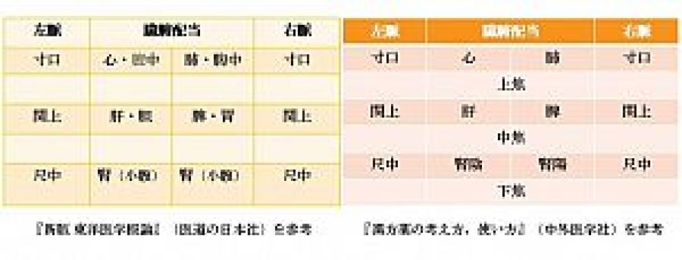 脈診の臓腑配当、鍼灸と漢方の比較