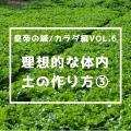 皇帝の鍼/カラダ編vol.6 理想的な体内土の作り方 その③
