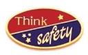 213 1161 1 - Think Safety Award Pin