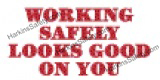 SD1031 1 - Working Safely...