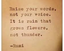 "QUOTE:  Rumi ""Raise your words"""