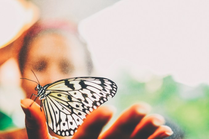 Woman-Holding-Butterfly-10-26