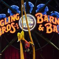 From Harlem Founder James Bailey, To Ringling Bros. Circus To Closure After 146 Years