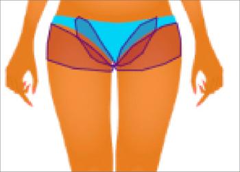 hz-bikini-boyshort-leg