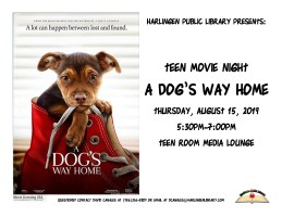 Teen Movie Night @ Harlingen Public Library- Teen Room