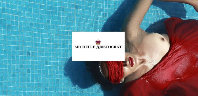 michelle aristocrat website