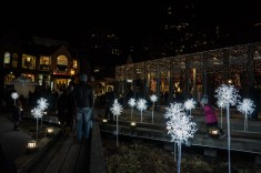 Holiday Magic Yorkville (4)