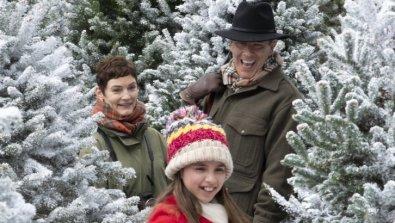 Last Vermont Christmas (7)