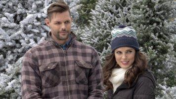 Last Vermont Christmas (8)
