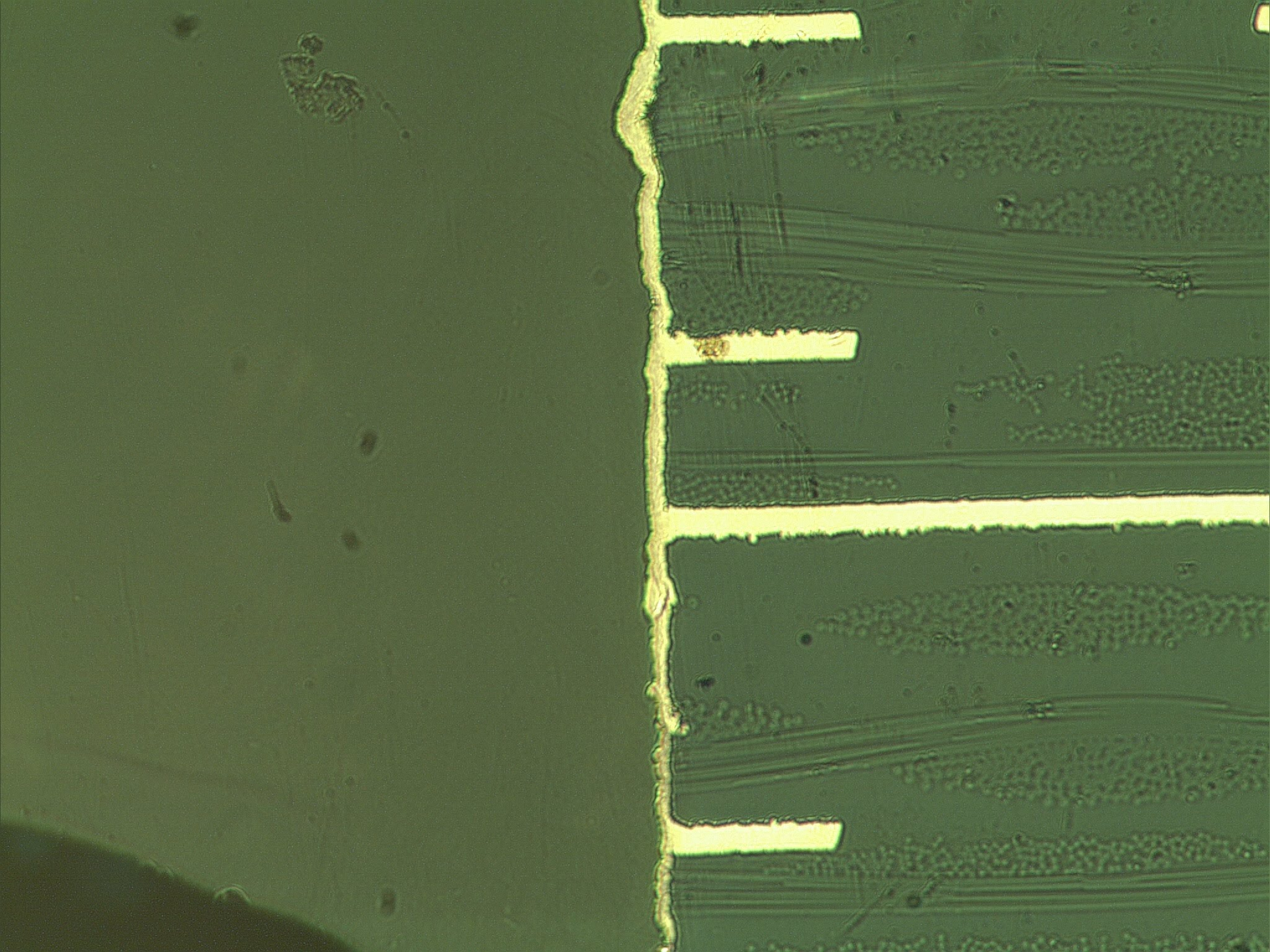 Advanced Materials Use Of Polypyrrole In Printed Circuit Boards Or Singlesided Copper Clad Fr4 Epoxy Sheet For Board Micro Intersection Analysis X200 At Plated Hole Walls 16 Layer Pcb