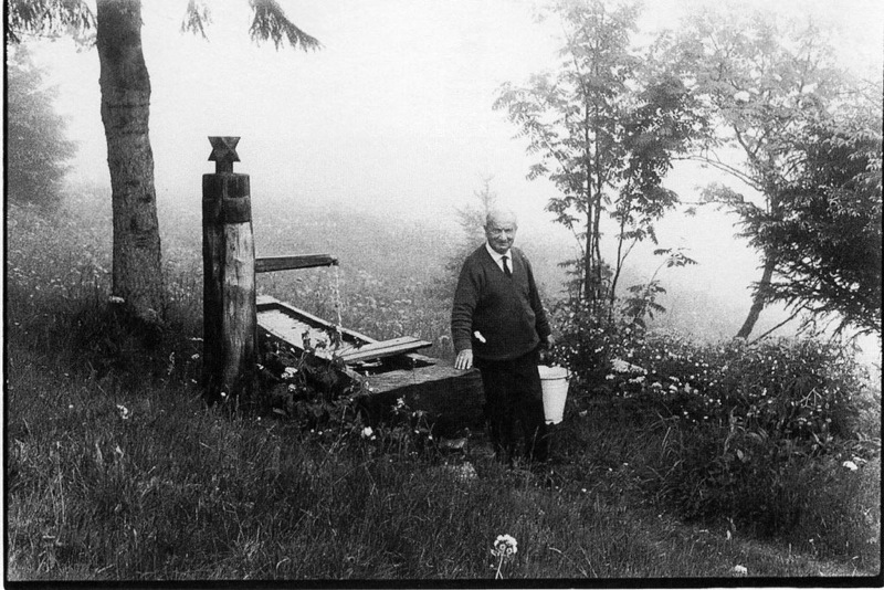 Heidegger, σκόλοπες and the road to accepting non-thinking…