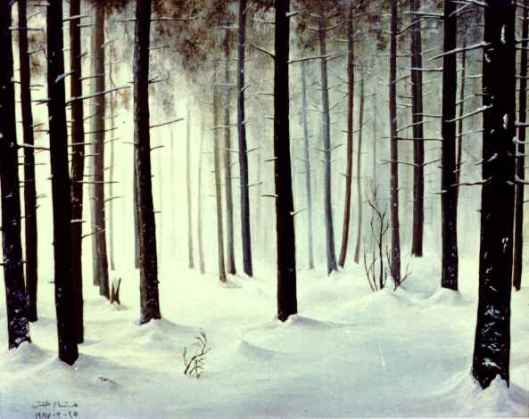 snow-forest