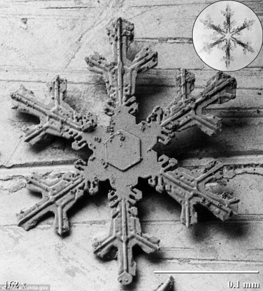 Snowflakes-under-a-Microscope-11