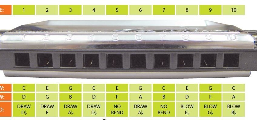 What key harmonica is best for beginners