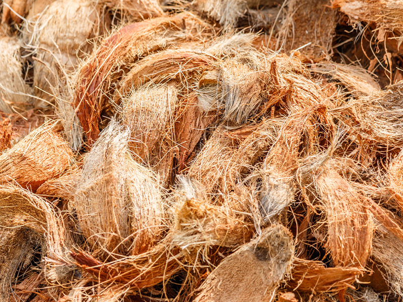 Coconut Fiber, source : PRO-MIX par Premier Tech Horticulture