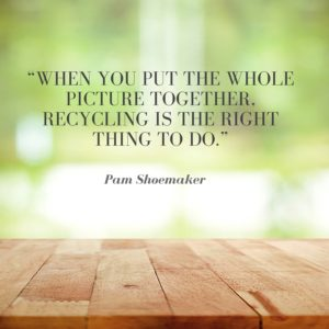 sustainability quote