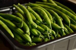 Fresh Green Beans (DSC_0417)