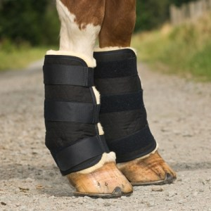 Horsedream saddlepads 6702621 Home