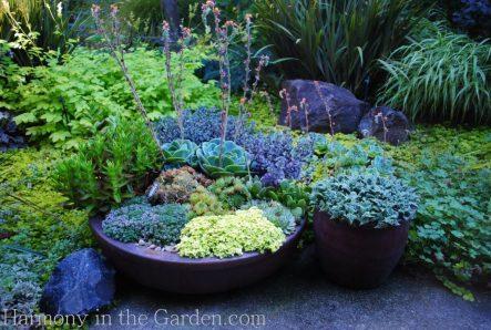 Freeland Tanner-Garden Designer-Napa-Garden Decor-Bespoke Garden Decor-antique garden tools-containers