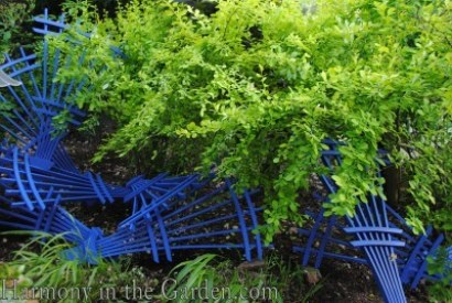 Blue trellises