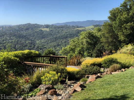 awkward space transformations-northern california-garden design-slopes-tiers