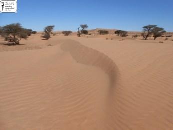 Oued Afra