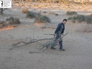 Sahara 2011_9_3