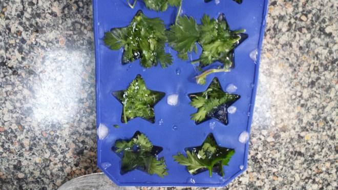 7-9-14 frozen herbs