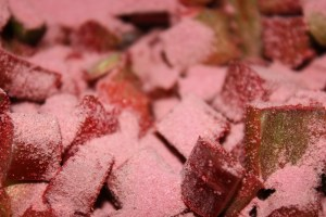 6 cups rhubarb cut into small 1/2 inch pieces. Place cut rhubarb on top of the bottom layer. Then sprinkle 6 oz package of Jello powder (strawberry or cherry) over rhubarb.