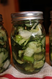 Sweet Refrigerator Pickles Recipe adapted from Jane Reslock Feist 2 pounds cucumbers, sliced 1/2 inch thick on the diagonal (about 8 cups) 1 medium Vidalia or other sweet onion, sliced 1 inch thick 2 celery stalks, sliced 1/2 inch thick on the diagonal Coarse salt 2 cups sugar 1 cup cider vinegar 1 teaspoon celery seed 1 teaspoon mustard seed In a colander set over a medium bowl, toss cucumbers, onion, and celery stalks with 1 1/2 teaspoons salt. Set aside to drain, 30 minutes, tossing occasionally. In a small bowl, combine sugar, vinegar, celery seed, and mustard seed; stir until sugar is dissolved. Divide cucumber mixture among clean jars or airtight containers, and pour vinegar mixture over. Refrigerate at least 8 hours (or up to 2 weeks). Source: Martha Stewart