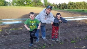 We utilize fence repurposed from my parents farm to use for our trellis for our peas. We are ready for these little plants to take off climbing.