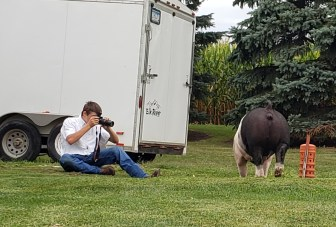 Keith showed his 4-H pig for the virtual show. After showing he picked up the camera to capture images of his 4-H animal.