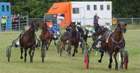 I T H R F Harness Racing Cork