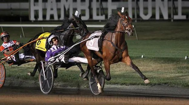 Spirit To Win - 2015-08-01 - Meadowlands