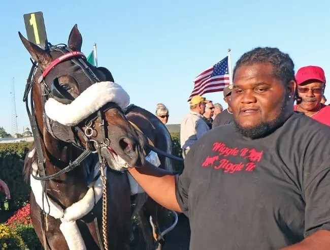 Wiggle It Jiggleit (with caretaker Mike Taylor) helped elevate Indiana-sired horses when he won the 2015 Little Brown Jug en route to Horse of the Year honors | Mark Hall / USTA