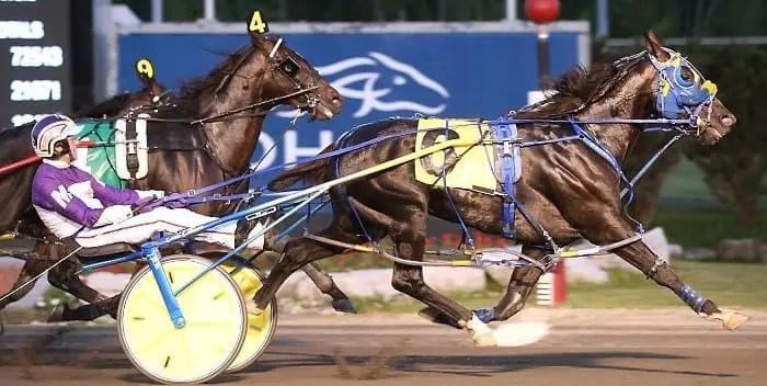Betting Line (David Miller) won what was believed to be the tougher of the two Pepsi North America Cup eliminations with a 1:49.1 effort Saturday at Mohawk | New Image Media