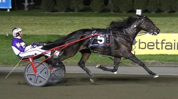 David Miller drove Broadway Donna to victory for Fashion Farms and trainer Jim Campbell.   Michael Lisa
