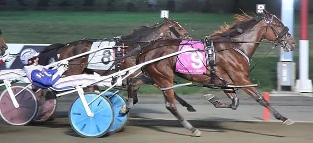 Call Me Queen Be pulled off the 12-1 upset to give driver Scott Zeron his first Breeders Crown.   Michael Lisa