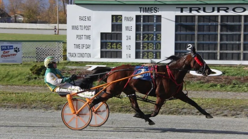 Surrealist (winning at Truro Raceway with special guest driver Jody Jamieson in the bike) won 19 of his 31 starts to tie the seasonal North American record for wins in a season. | Kyle Burton